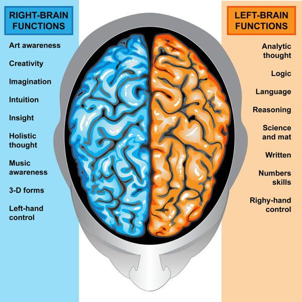 12 Советов оптимизации конверсии на основе человеческой психологии и поведенческой экономики