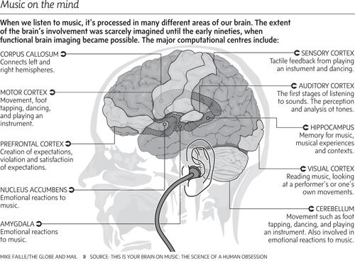 8 Фактов о влиянии музыки на работу головного мозга