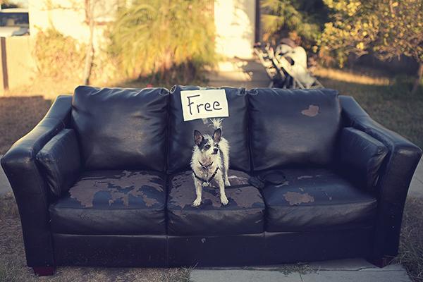 Как сделать freemium-бизнес прибыльным: кейс от evernote
