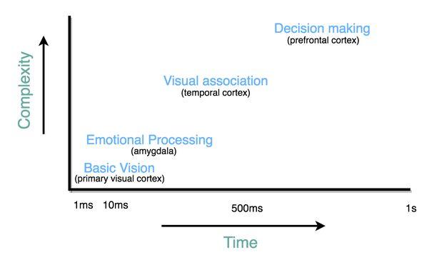 Нейромаркетинг: как оформление презентации влияет на продажи?