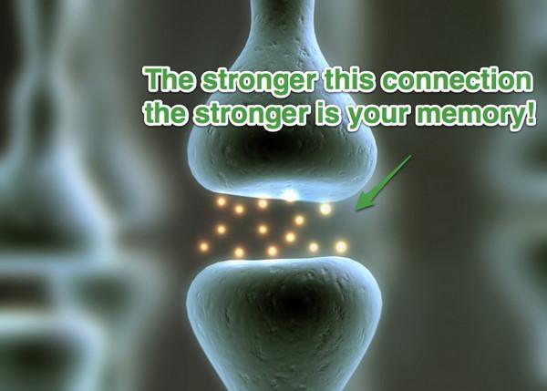 Память, острая как бритва, или 6 научных способов помнить больше