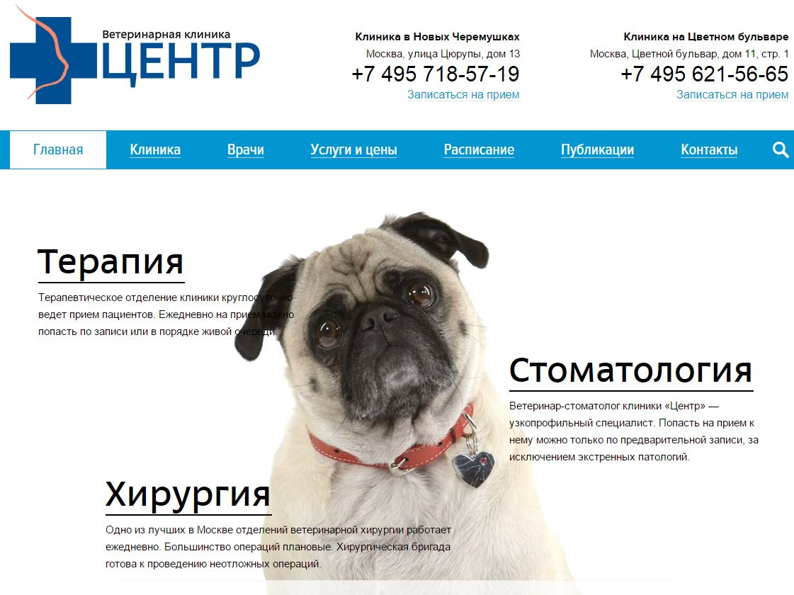 Шаблоны по бизнес-нишам: ветеринарные услуги